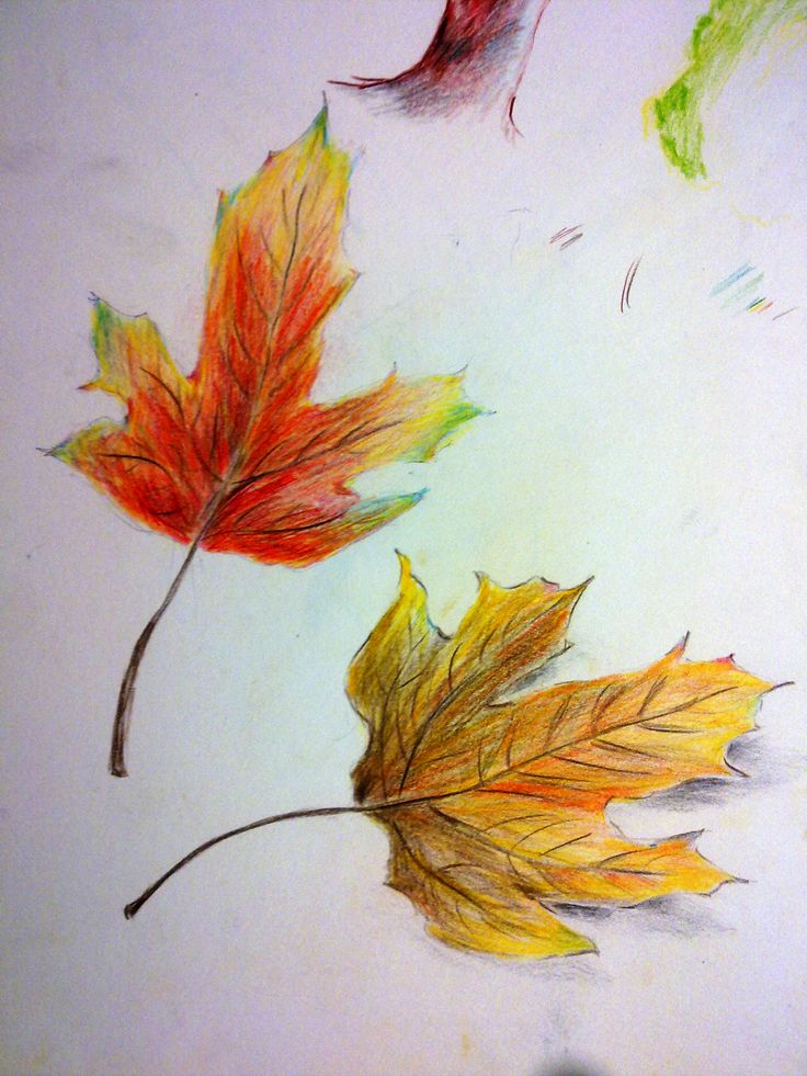 #nature#leaves #colour pencils by Sanah