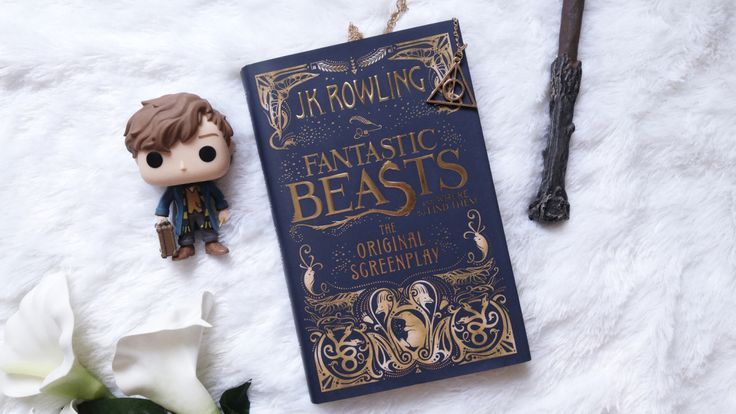 Resultado de imagem para fantastic beasts and where to find them: