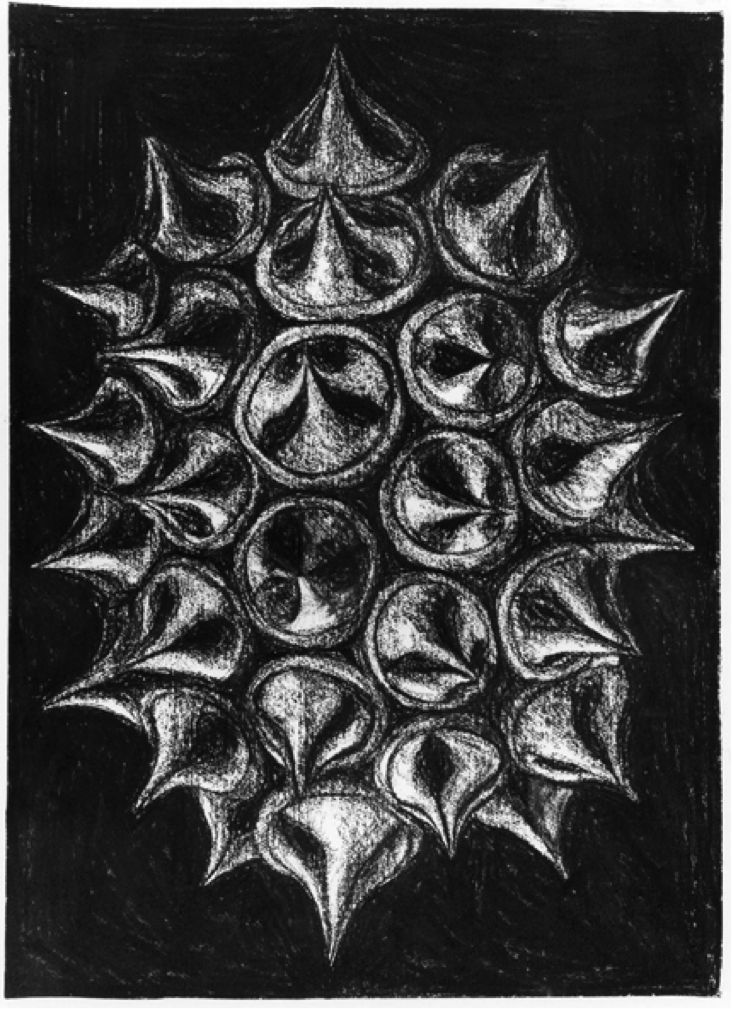 Peter Randall-Page, Star shaped cluster of gum nuts, 1994, charcoal, 77 x 55 cm  |    http://www.encounterfineart.com/#!broadway-house-group-exhibition-/c23o6