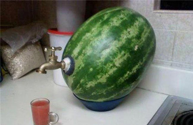 water melon  juice dispensr