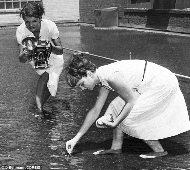 24 best images about jackie her cameras on pinterest for Koi pond builders orlando fl