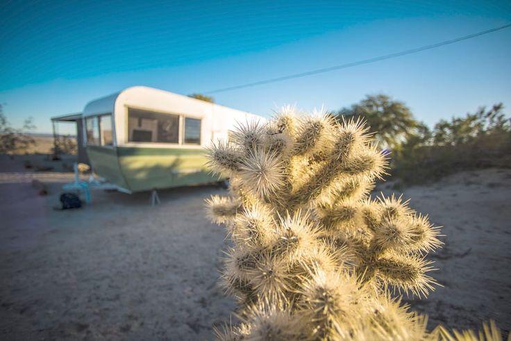 Mid-Century Hiking & Camping Cabin in Joshua Tree - Cabañas en alquiler en Joshua Tree, California, Estados Unidos