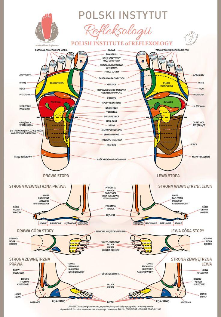 Strony zawierają informacje o refleksologii, czyli zabiegach leczniczych bazujących na refleksach znajdujących się w stopach, dłoniach, twarzy...; Polski Instytut Refleksologii - adresy, kontakty, szkolenia; nowe artykuły i felietony. Mapy refleksologiczne stóp i dłoni.