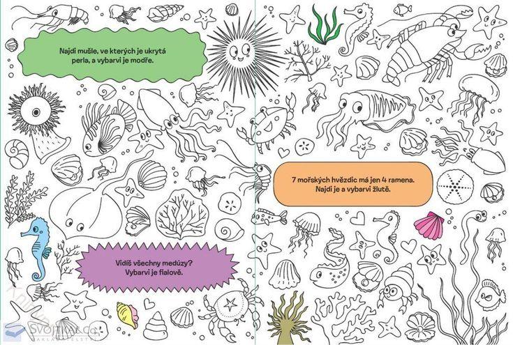MALOVÁNÍ, KRESLENÍ | Hledej a vybarvuj Zvířátka | Knihypro - dětské knihy