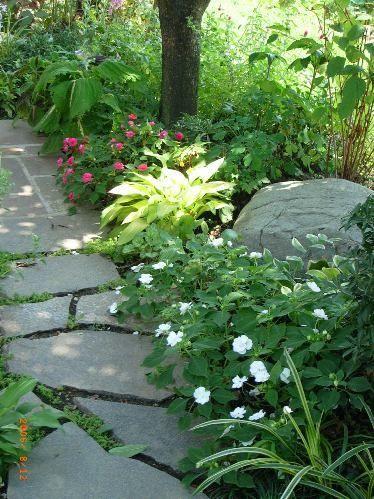 木洩れ日につつまれる庭|グランドカバーで手入れが楽になった庭|庭とエクステリアのデザインは群馬県高崎市のホスタガーデンズ