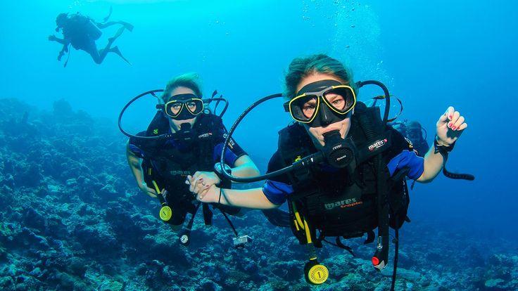 Diving, Alternatif Honeymoon yang Menyenangkan