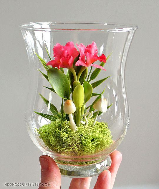 Incredible miniature orchid terrarium ... wow!