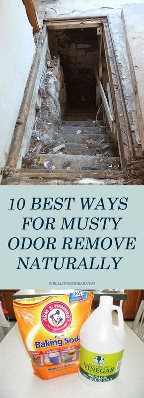 How To Get Rid Of Musty Smell 10 Best Ways For Musty