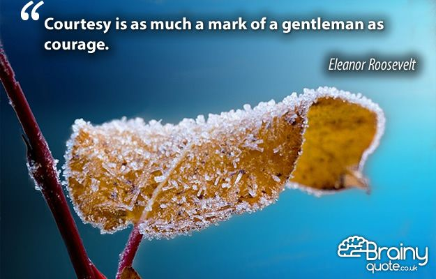 Courtesy is as much a mark of a gentleman as courage. Eleanor Roosevelt.