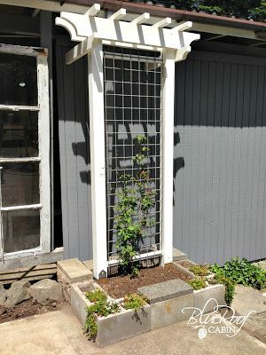 DIY Garden Trellis..a few adaptations and I may have an arbor for my two white Lady Banks rose bushes!