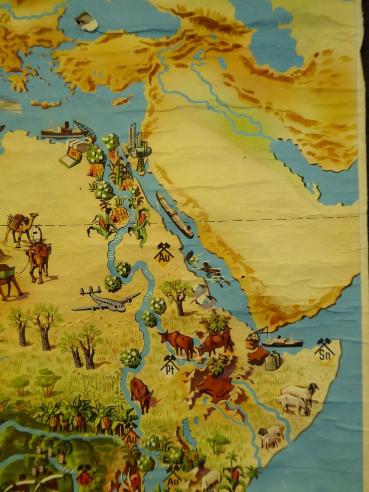 Vintage 1940s School Chart Map of Africa - The Collectors Bag