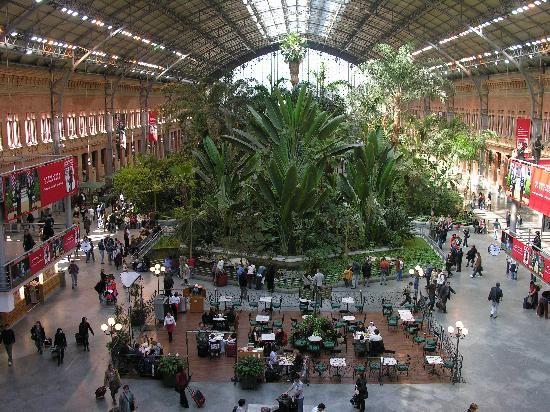 La stazione di Atocha a #Madrid è una grande serra-giardino