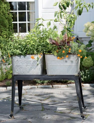 ... about washing tubs on Pinterest   Gardens, Planters and Wash tubs