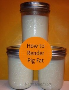 How to render pig fat you ask? You didn't? Let me share anyway because you never know when you will need to.