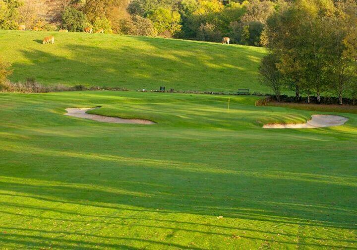 Balmore Golf Club Par 3 6th hole