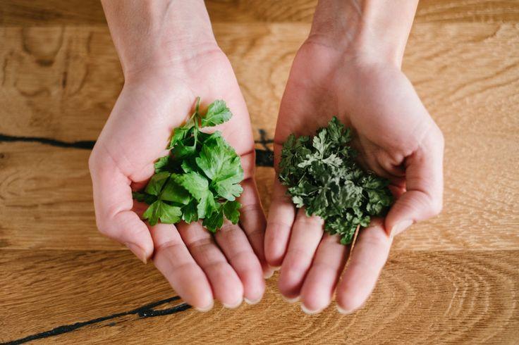 Un metodo semplice per essiccare erbe ed aromi usando il forno a microonde.