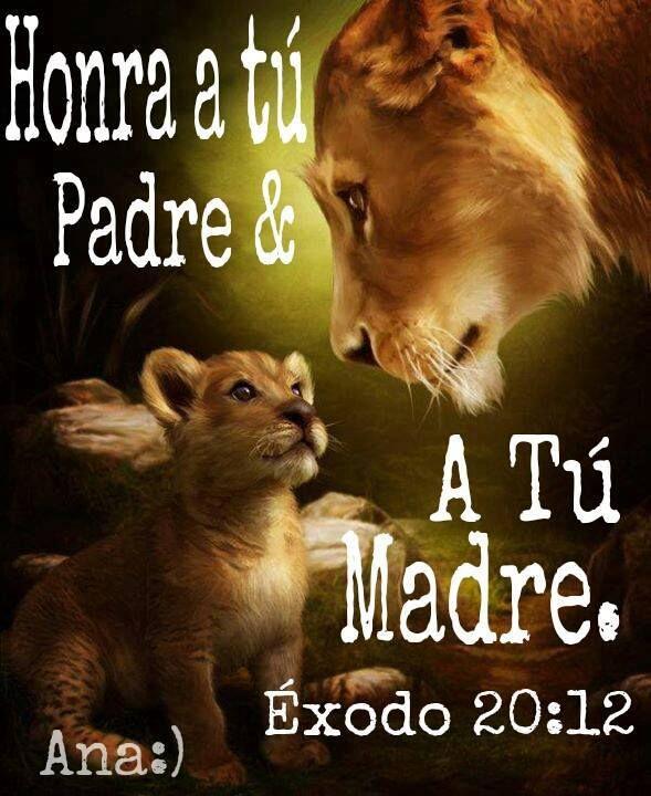 """El Leon de Juda dice: """"Honra a tu padre y a tu madre, para que tus días se alarguen en la tierra que Jehová tu Dios te da""""...Exodo 20:12 ♥♥"""