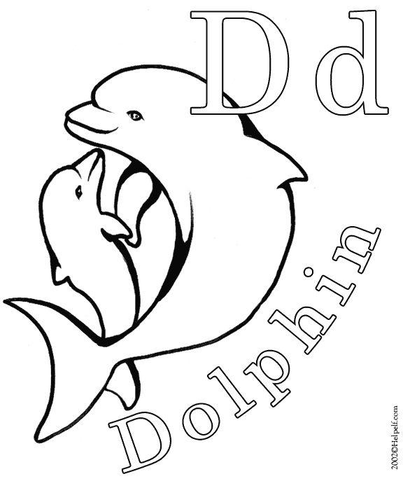 39 besten delphine bilder auf pinterest  delphine fische