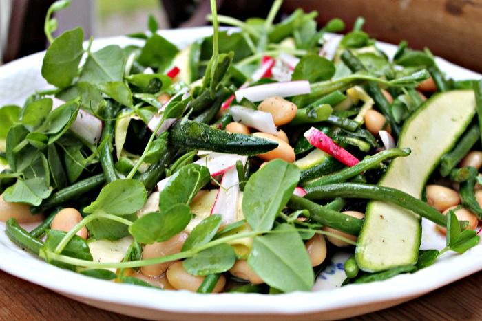 salad with White beans, green beans, radishes, pea sprouts, courgettes