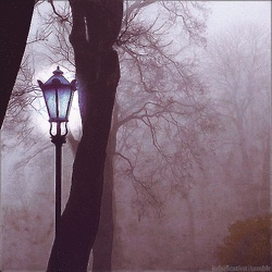 The Lamppost.