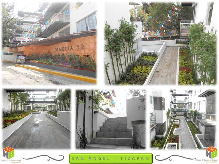 Renta departamento nuevo, equipado. Calle Camelias en Progreso Tizapan