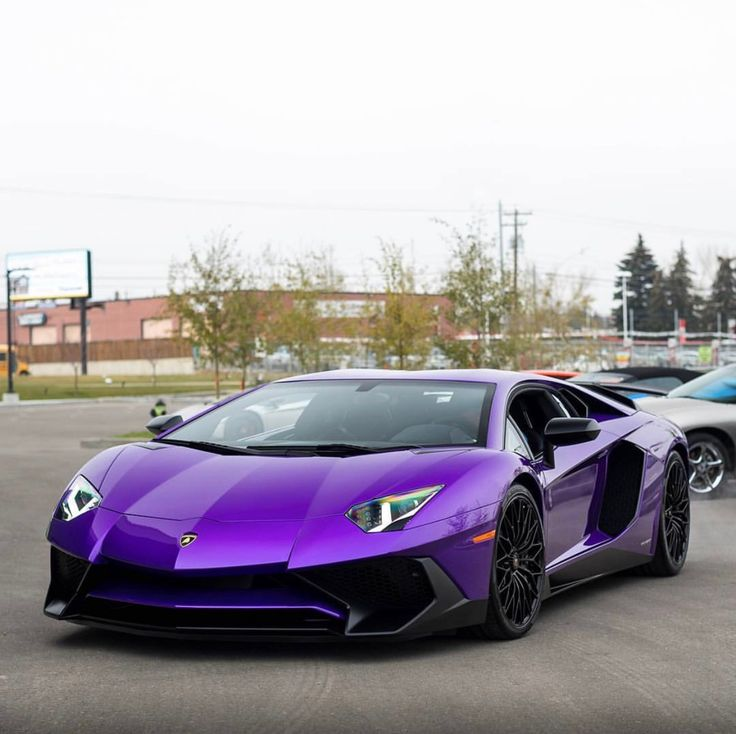 Lamborghini Aventador Super Veloce Coupe Painted In Viola