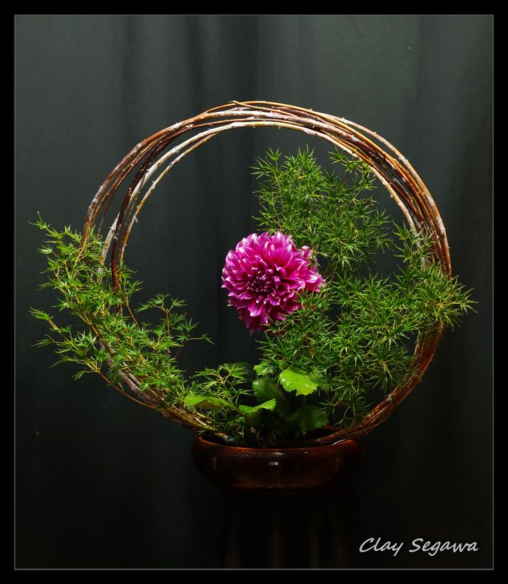 1330 Flower Arrangements, Dahlias