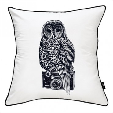 Re-decorating my living space - what a hoot! Aperture cushion = love! $54.95