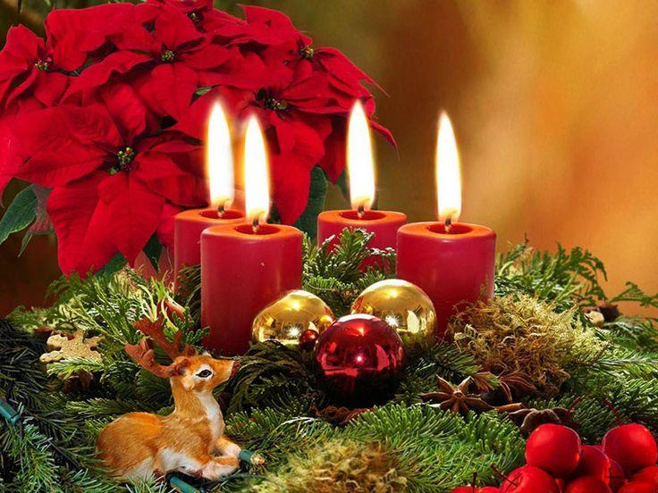 Colori, luci, vetrine dei negozi addobbati, e quel profumko misto di agrumi, zucchero e legno arso nei camini rendono questo periodo dell'anno particolarmente suggestivo.  Lo shopping natalizio è quello più appagante e allo stesso tempo stressante, perché ai regali da fare a parenti, amici, innamorati, si aggiunge la ricerca dell'addobbo perfetto, che tradizionalmente riguarda tre elementi centrali in ogni Natale che si rispetti: l'albero, la casa e l'esterno della casa.