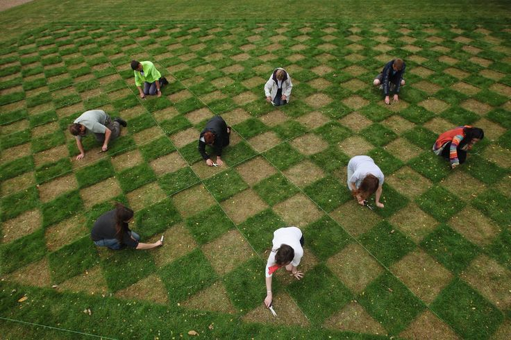 Volunteers cut a large scale checkerboard design, using just hairdressing scissors, in the grass lawn at the National Trust's Ham House and Garden