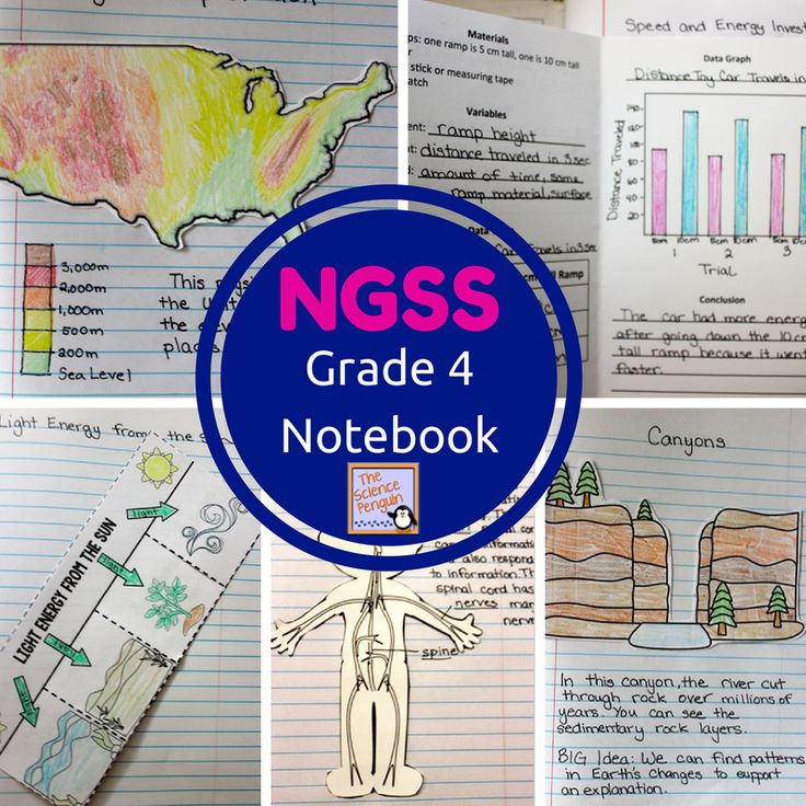Hello again Penguin Friends, After completing the 5th grade NGSS Interactive Science Notebook, I made the 4th grade version.  I'm pretty excited about this one! Which states have adopted the Next Generation Science Standards? California, Oregon, Nevada, Washington, DC, Kansas, Kentucky, Illinois, Maryland, Delaware, Rhode Island, New Jersey, and Vermont Can this be used if …