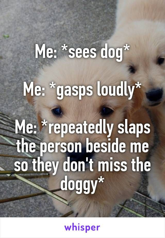 Me: *sees dog* Me: *gasps loudly* Me: *repeatedly slaps the person beside me so they don't miss the doggy*