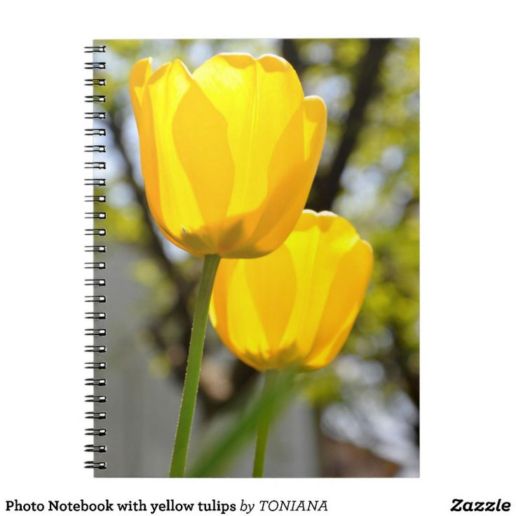 Photo Notebook with yellow tulips