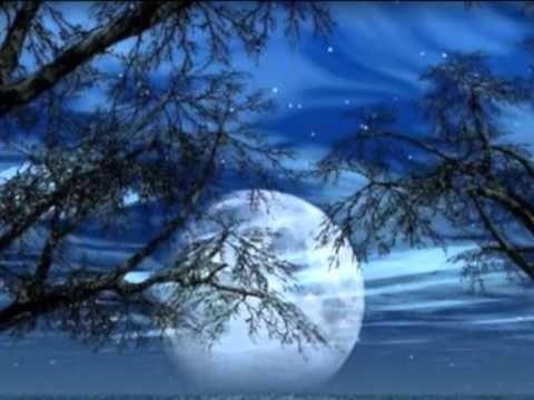 Nazeri - Yalda از غم عشقت دل شیدا شکست - ناظری - YouTube
