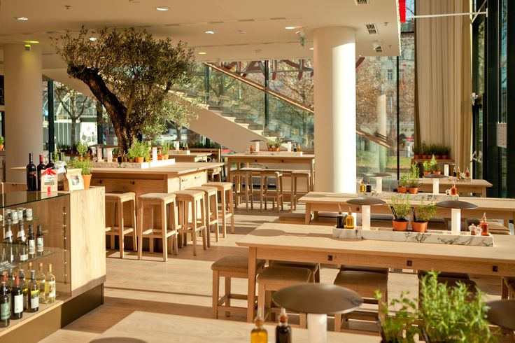 The new design furniture and olive tree vapiano
