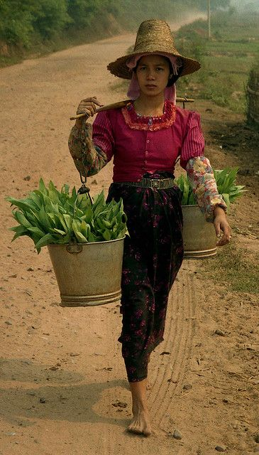 Dai woman with buckets of leaves; E of Mengla, Xishuangbanna Region, Yunnan, China