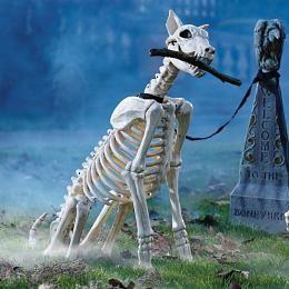 skeleton dog decorations for halloween