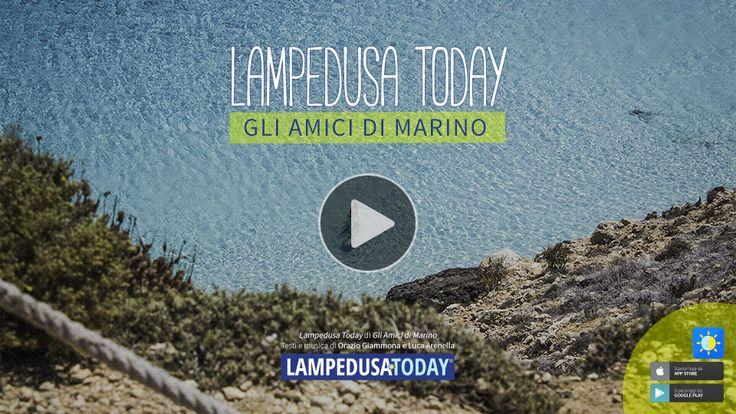 La canzone dell'estate! | Lampedusa Today