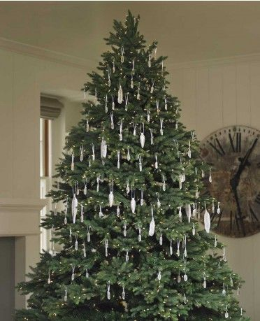 The Blair House always includes a 9-foot Christmas tree in an alcove overlooking Pennsylvania Avenue decorated with quartz crystal ornaments from Viva Terra and LED lights.    Read more: http://www.motherearthnews.com/natural-home-living/DIY-holiday-decor-zb0z1112zkel.aspx#ixzz1gGuPRuw7