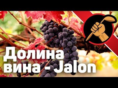 Jalon Valley - долина вина - YouTube