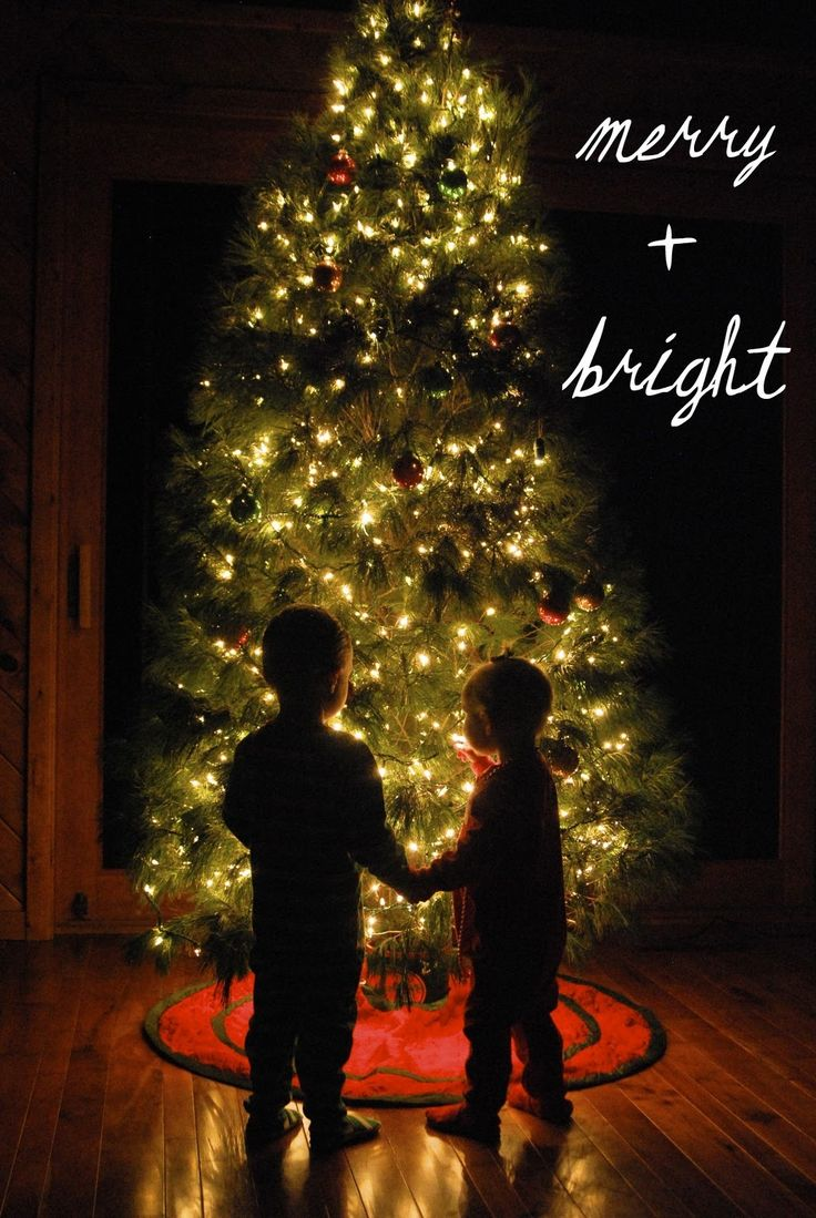 Christmas picture tutorial - how to set your camera manual settings to capture the tree lights.