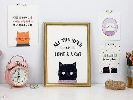 Plakaty z kotami do druku ( wyzwanie dla kociarzy!)