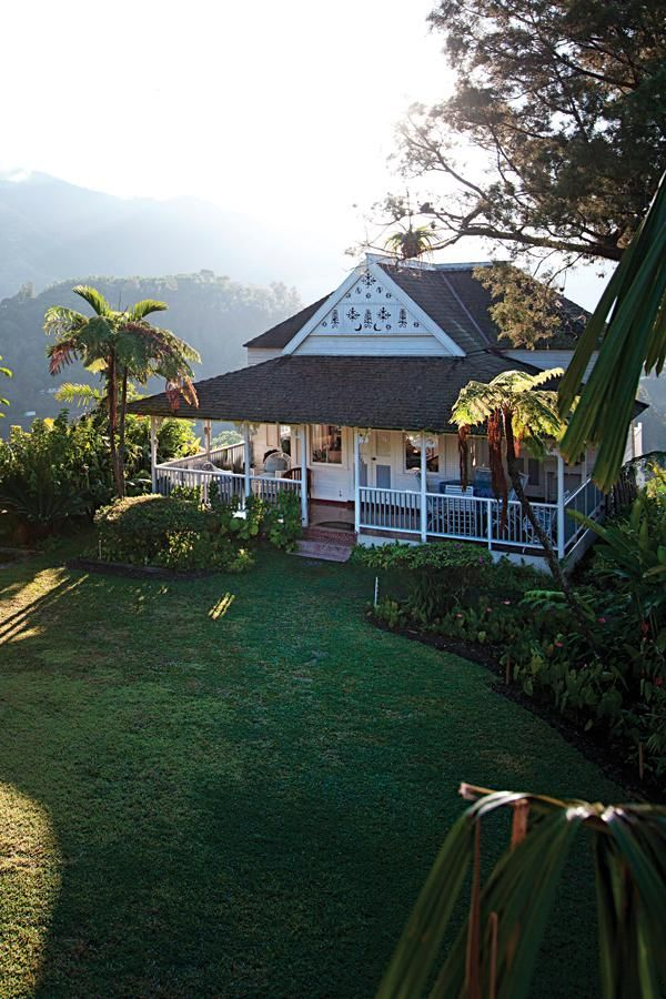 strawberry hill, blue mountains, jamaica