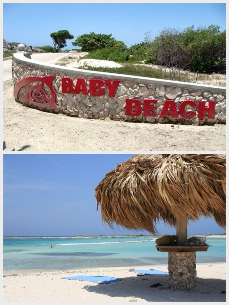 230 Best Images About Aruba! On Pinterest