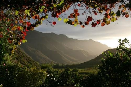 Montagu, South Africa (want to go)