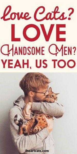 Love Cats? Love Handsome Men? Yeah, Us Too - Hot Men and Kittens Instagram