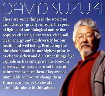 ~ David Suzuki