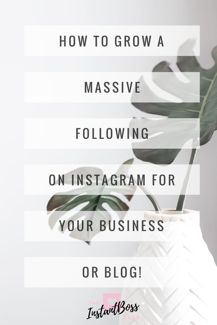 Instagram Marketing, Youtube Marketing, Facebook Marketing, SnapChat Marketing, Linkedin Marketing, Pinterest Marketing, we are teaching it all! How to grow a massive following on Instagram for your business or blog. Free Instagram course. How to gain followers on Instagram.