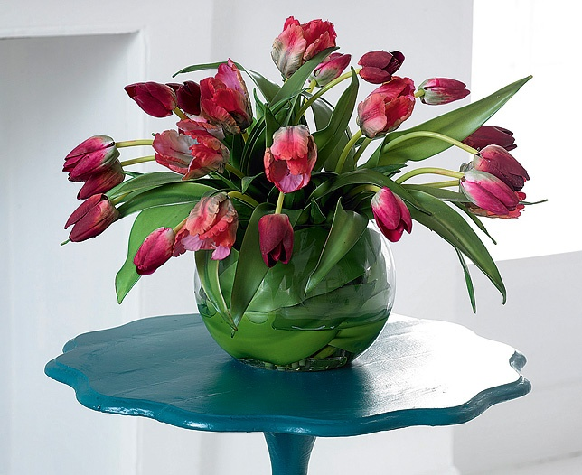 1000  images about Tulip Collection on Pinterest  French, Vase and Tulip