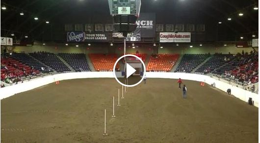 Must watch pole bending video!! Horse finishes pattern by self